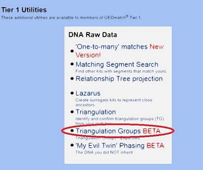 The Blundering DNA Genealogist: Creating a Basic GEDmatch DNA Workbook