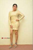 Actress Pooja Roshan Stills in Golden Short Dress at Box Movie Audio Launch  0108.JPG