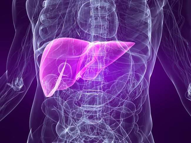 Kenali Sejak Dini, Gejala Hepatitis B yang Berbahaya