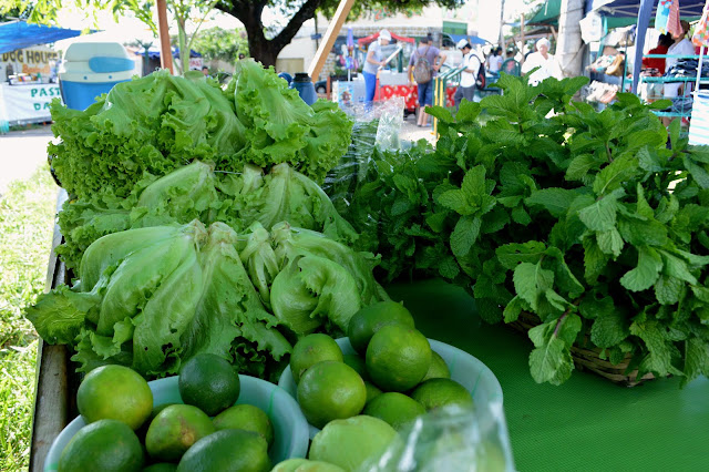 verduras e ervas diversas