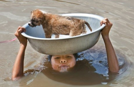 A young boy puts himself in danger to keep his dog safe during a flood.