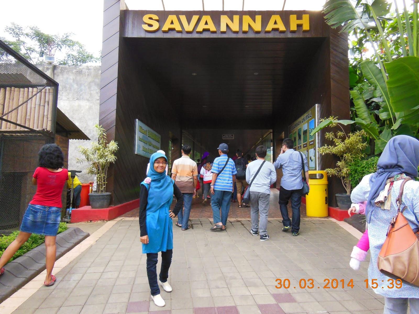 Mbulan 2014