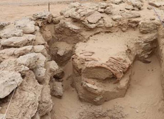 Bronze Age trading post found on Sir Bani Yas Island