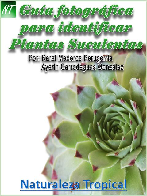 Catálogo o Guía fotográfica para identificar suculentas de nuestro jardín