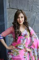 Angela Krislinzki Rogue Movie Fame Telugu Actress in Saree Backless Choli 113.JPG