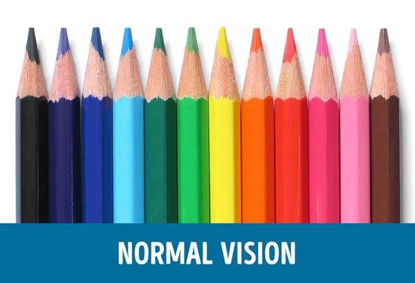 penglihatan-normal