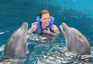 dolphin swim tour panama city beach