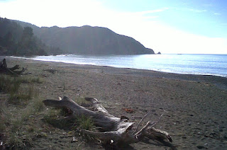 Looking toward Whites Bay from Rarangi Beach (northern Cloudy Bay, Marlborough, New Zealand) on a calm sunny day.