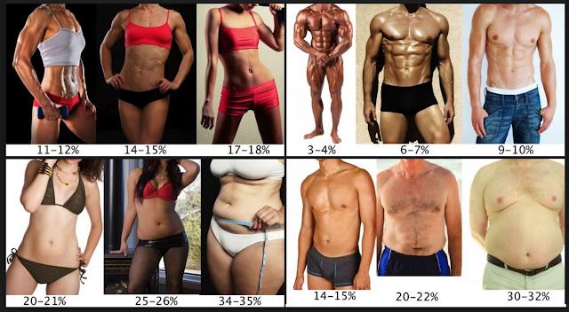 Відсоток жиру в організмі та кубики пресу