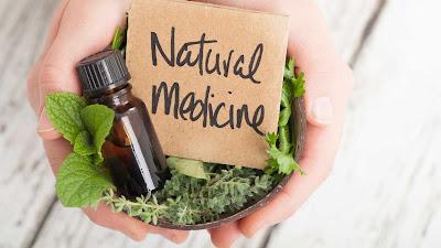Aprenda a utilizar de forma segura as plantas medicinais