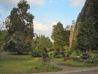 Tempat Wisata Edukasi Kebun Raya Cibodas di Cianjur