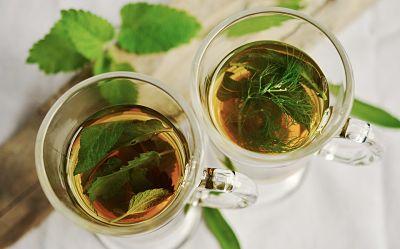 Plantas medicinales. Dos tazas de infusión de hierbas, con sus hojas dentro y otras sobre la mesa.