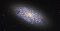 Dwarf Galaxy NGC 5949