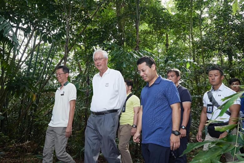 (From left, foreground) NParks director of Sungei Buloh Wetland Reserve How Choon Beng, Emeritus Senior Minister Goh Chok Tong and Second Minister for National Development Desmond Lee (in blue) walking in the reserve.