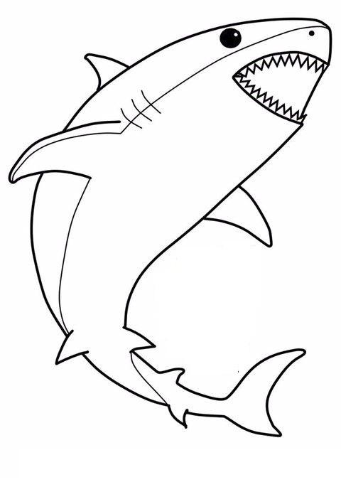 Tranh tô màu con cá mập đơn giản