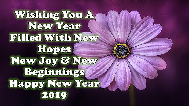 Happy New Year 2019 Wishes Photo