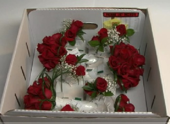 something white mail order wedding flowers. Black Bedroom Furniture Sets. Home Design Ideas
