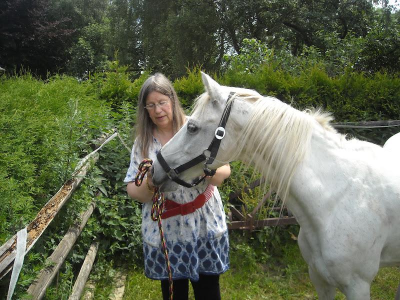 pferd hefe geben