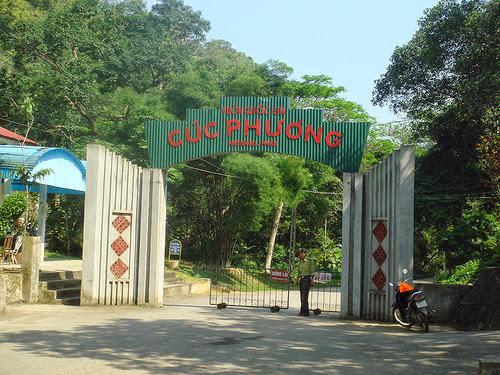 du lịch cúc phương 1 ngày - du lịch Minh Anh