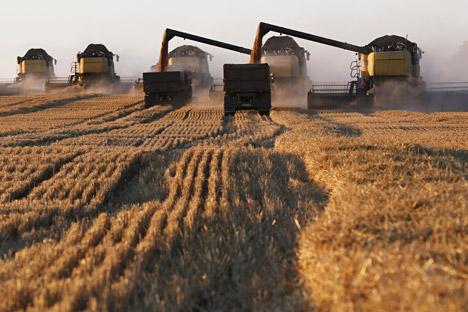 Výsledok vyhľadávania obrázkov pre dopyt Ruské poľnohospodárstvo