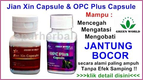 http://obatjantungbocor97.blogspot.com/
