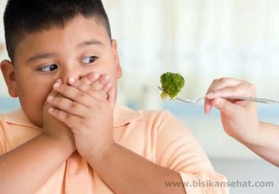 Cara Agar Anak Mau Makan Sayur