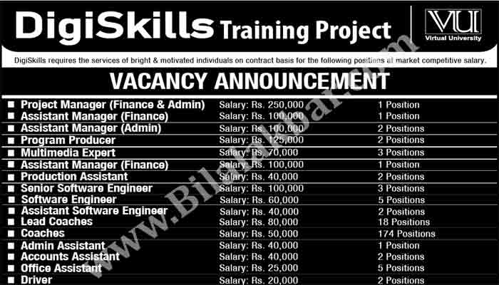 Jobs in DigiSkills Training Project (VU) Apply online