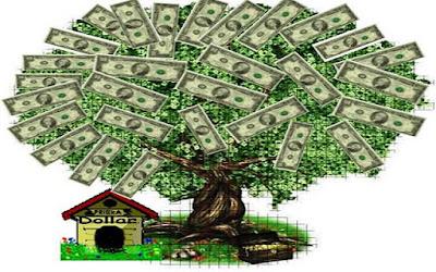 Comparteentumuro el rbol del dinero trae fortuna y - Planta china del dinero ...