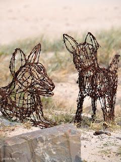 wire dingos