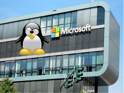 microsoft usa linux en sus servidores