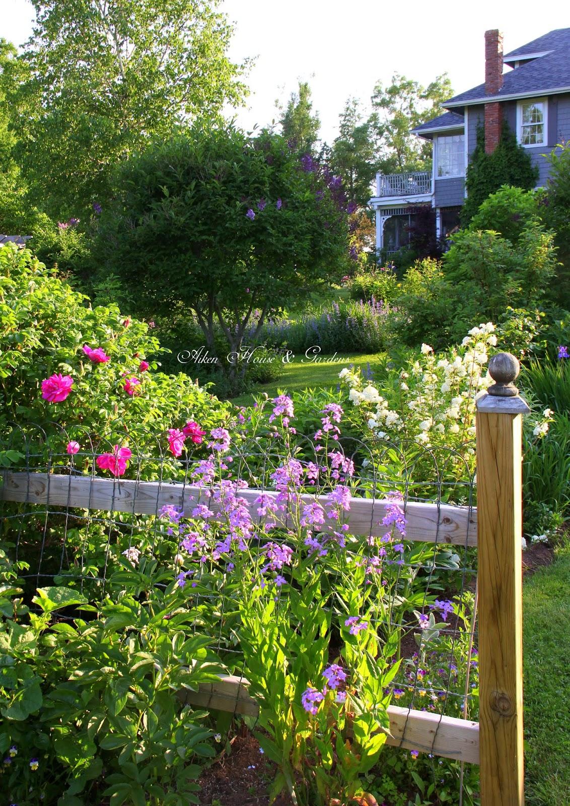 Aiken house gardens sunday garden tour for Aiken house