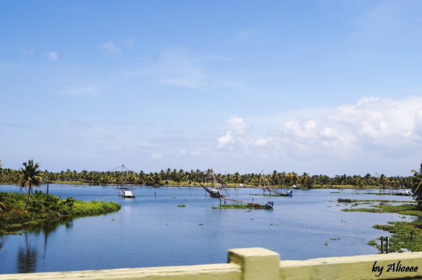 Kerala-India-paradis-tropical-de-vazut