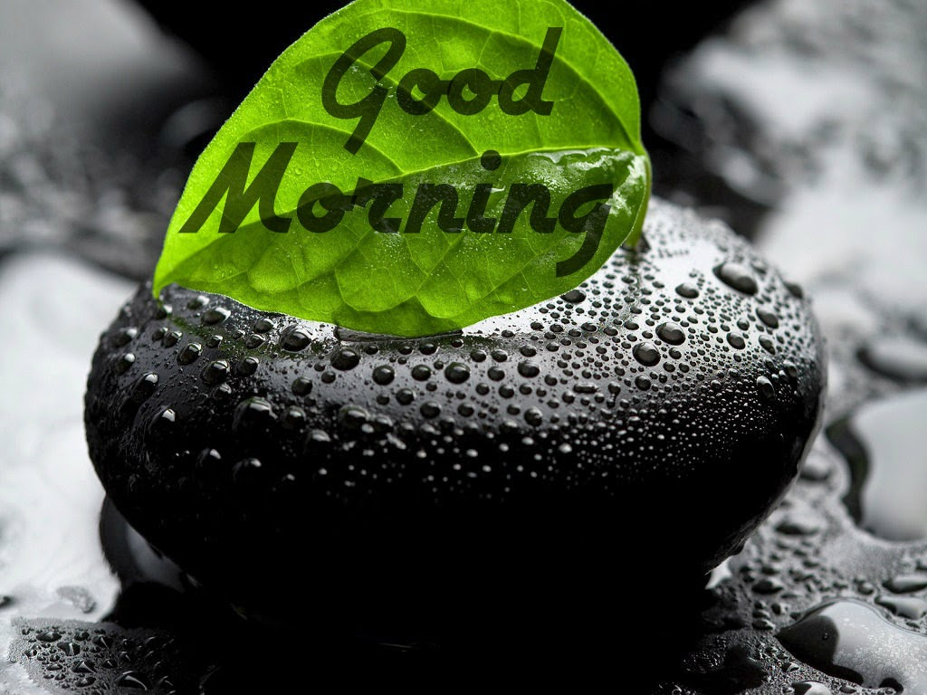 Gud Morning Wallpaper With Cute Baby Best Images Of Gud Morning Good Morning Photos Festival