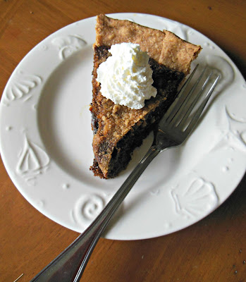 Shoo Fly Pie in a whole wheat crust and a spot of whipped cream.