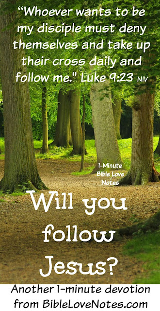 Luke 9:23-24, following Jesus, Obeying and following Jesus