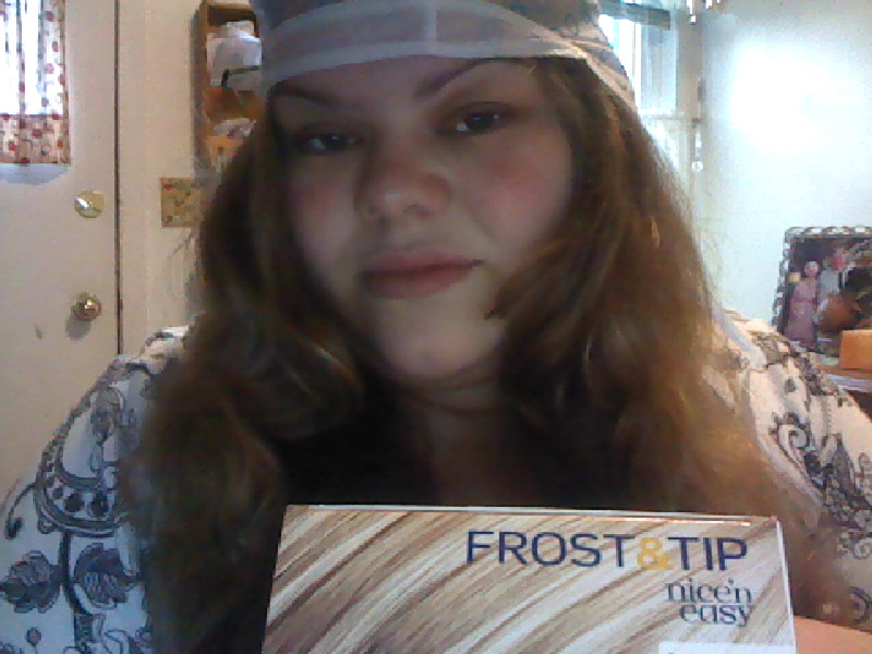 Clairol S Nice Easy Frost Tip 9 00 At The Family Dollar