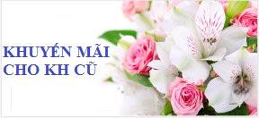Thành viên của hiệp hội thương mại điện tử Việt Nam