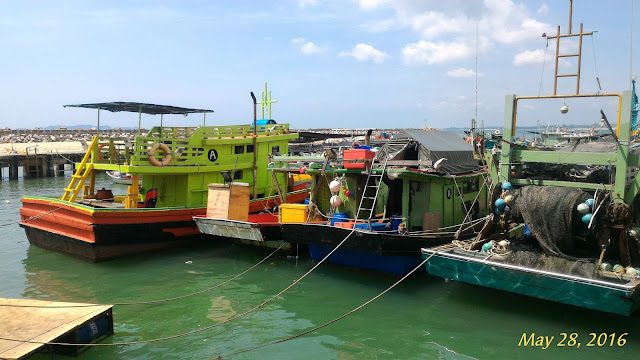 Trip Mencandat Sotong Kuala Terengganu