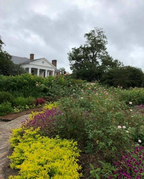 Boone Plantation garden Charleston SC