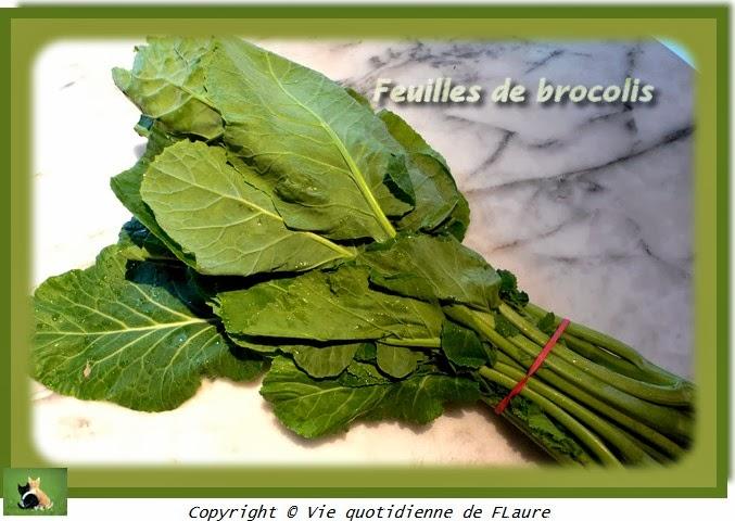 Vie quotidienne de FLaure: feuilles de brocolis