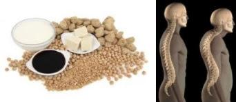 soja y la osteoporosis