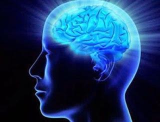 suplemen otak, makanan otak, obat alami meningkatkan kecerdasan, obat alami kuatkan daya ingat, mengatasi lupa, obat pikun, nutrisi otak, nutrismart
