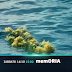 MemORIA | Η μεγαλύτερη ναυτική τραγωδία της Μεσογείου ξετυλίγεται στο Cosmote History