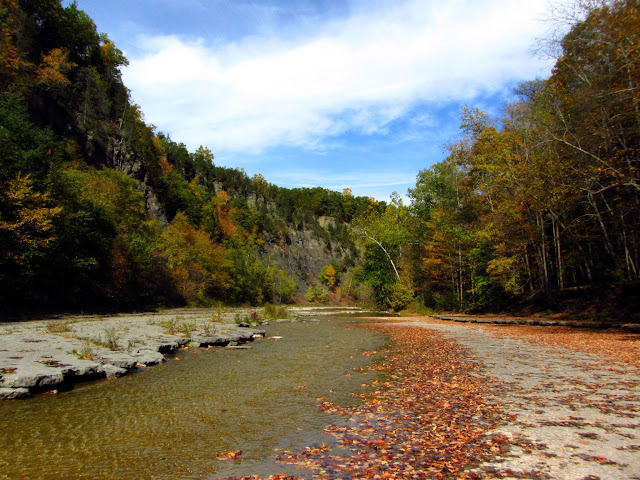 Photo of the Taughannock Creek