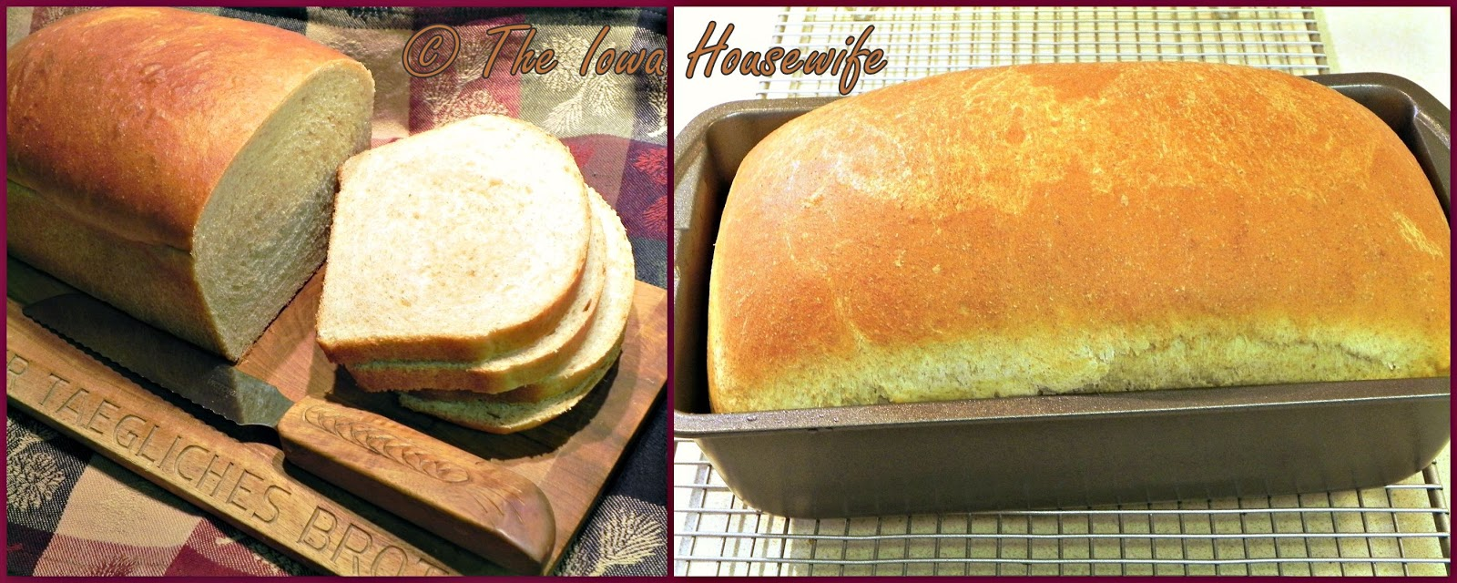 how to make bread in a food processor