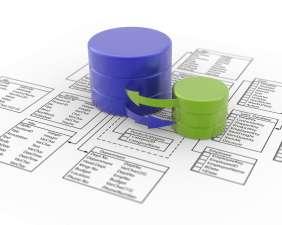 Basis Data (database)