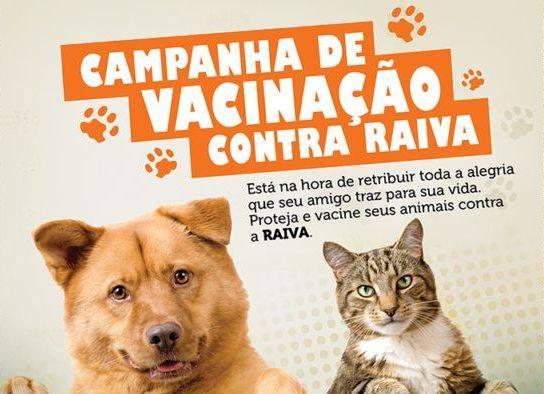 CAMPANHA DE VACINAÇÃO CONTRA A RAIVA PARA CÃES E GATOS PROSSEGUE ATÉ 1/12