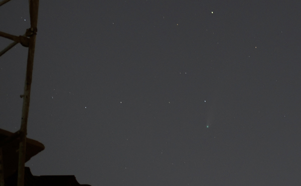 Comet NEOWISE as seen from my backyard in Pomona, California...on July 23, 2020.