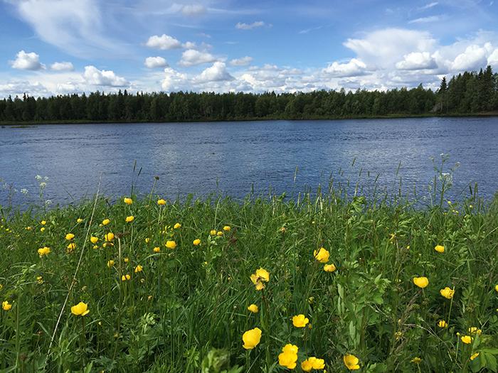 Finnland Ounasjoki
