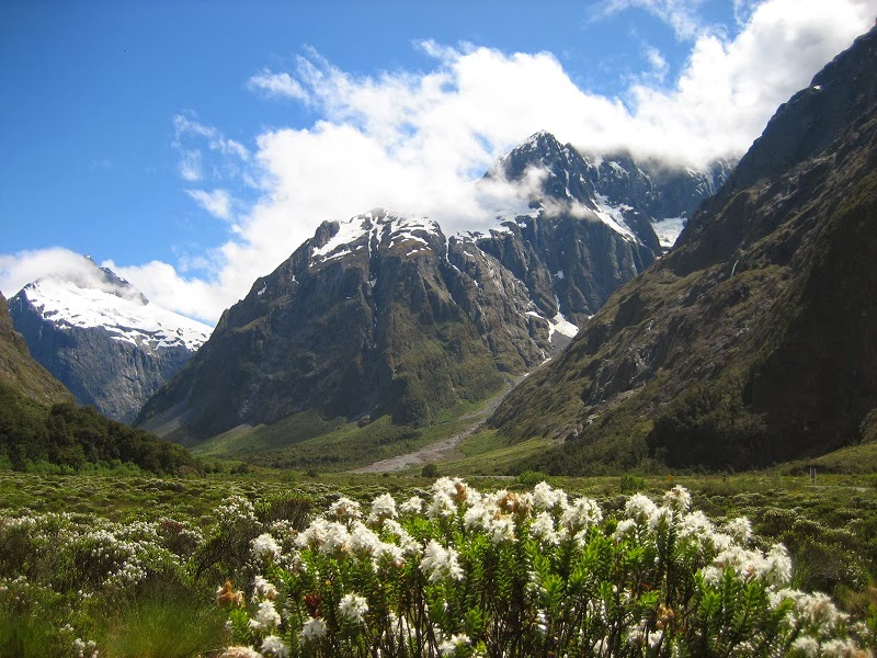 Fjordland, New Zealand - Top 10 Hiking Trails in the World
